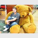 Giant Teddy Bear | Period: C2005